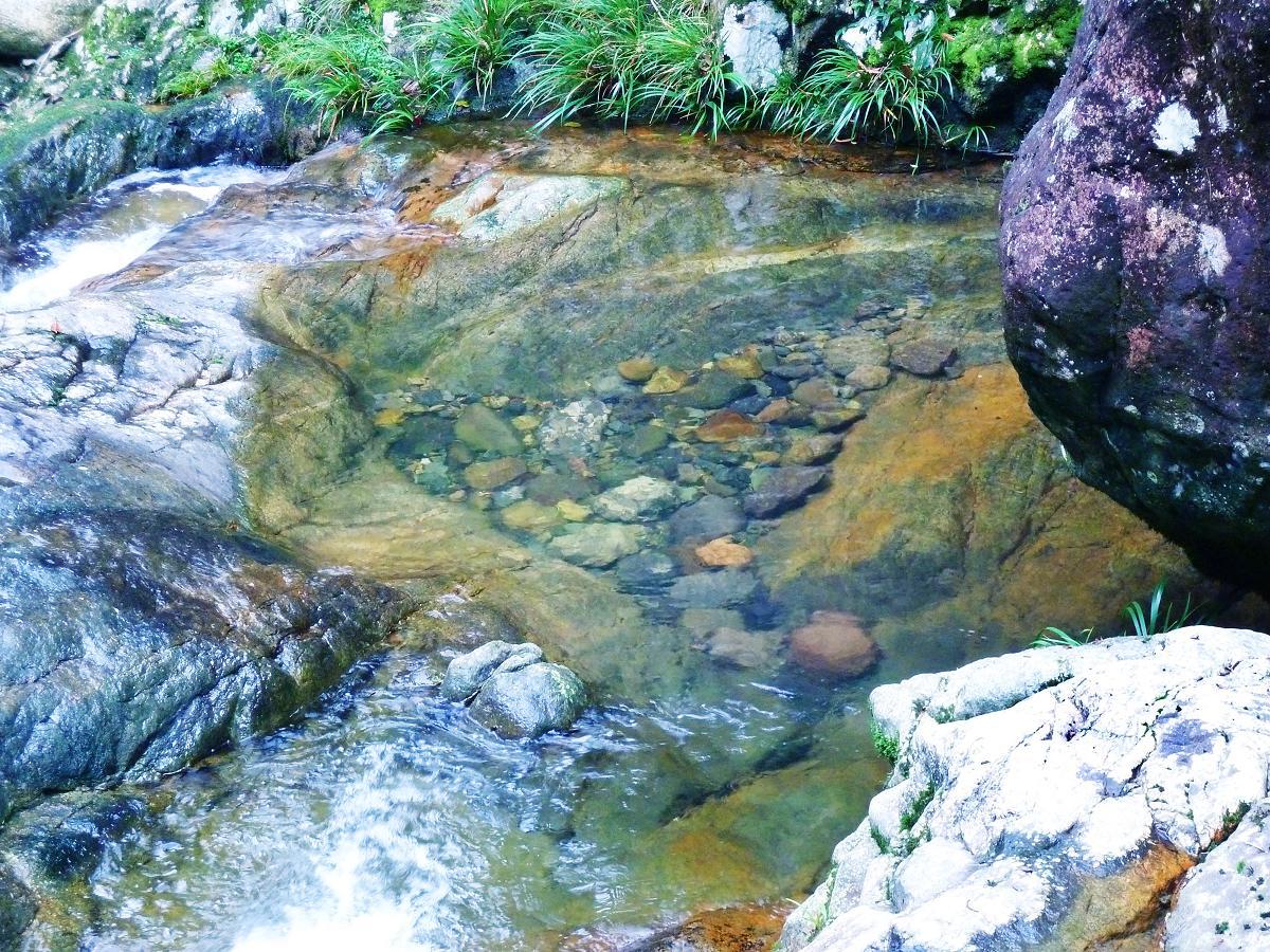 畲山水之纯净水世界